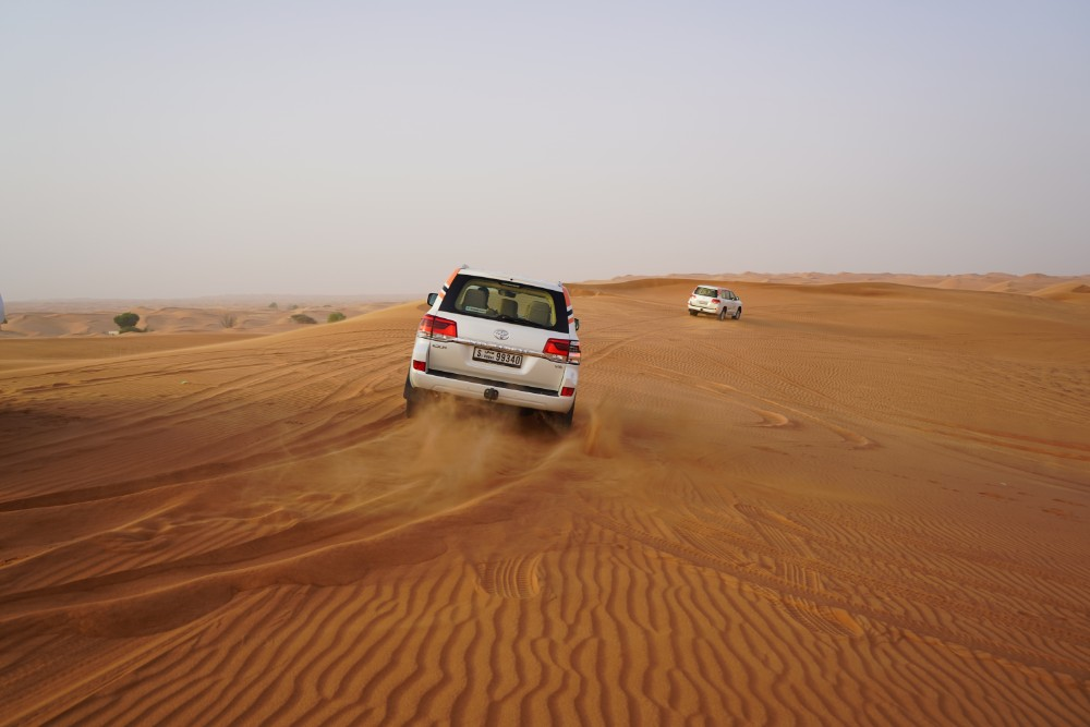 Economy Desert Safari